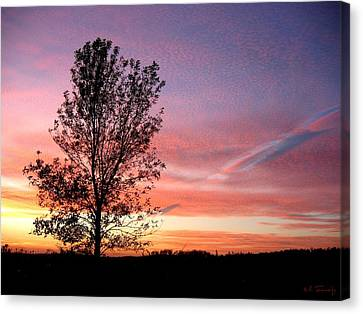 Canvas Print featuring the photograph Picture Perfect Sunset 6014 by Maciek Froncisz