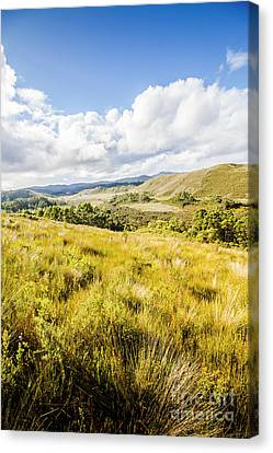 Copyspace Canvas Print - Picturesque Tasmanian Field Landscape by Jorgo Photography - Wall Art Gallery