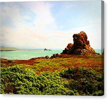 Canvas Print featuring the photograph Piedras Blancas 3 by Timothy Bulone