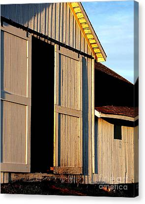 Pierce Point Ranch 16 Canvas Print by Wingsdomain Art and Photography