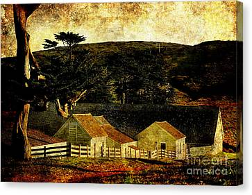 Pierce Point Ranch 18 . Texture Canvas Print by Wingsdomain Art and Photography