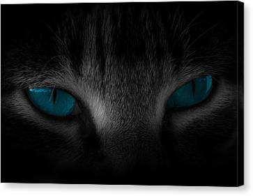 Piercing Canvas Print