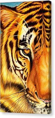 Piercing Glance Canvas Print by Sheryl Unwin