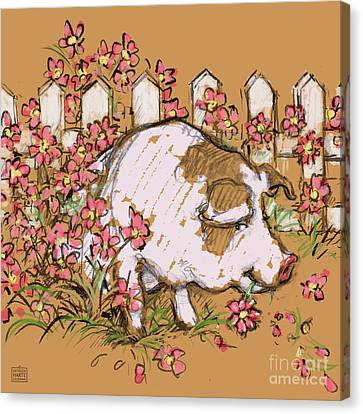 Pig Eating Petunias Canvas Print