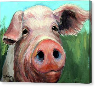 Pigs Canvas Print - Pig On Blue And Green by Dottie Dracos