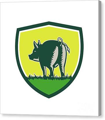 Pig Tail Rear Crest Woodcut Canvas Print