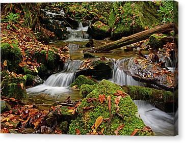 Pigeon Creek Cascades Canvas Print