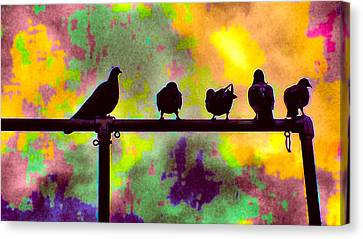 Pigeons In Abstract 2 Canvas Print