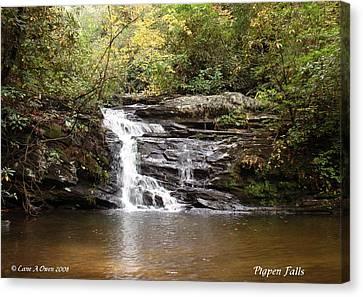 Pigpen Falls Oconee County Sc Canvas Print by Lane Owen