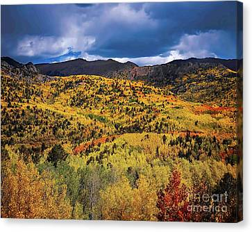 Pikes Peak Autumn Canvas Print by Jon Burch Photography