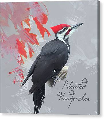 Canvas Print featuring the photograph Pileated Woodpecker Watercolor Photo by Heidi Hermes