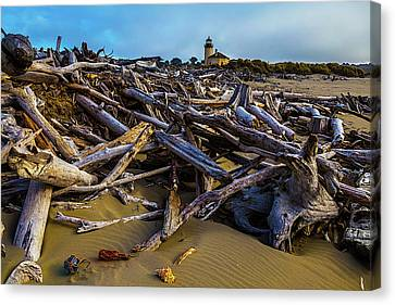 Piles Of Driftwood Canvas Print by Garry Gay