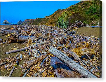 Sonoma Coast Canvas Print - Piles Of Driftwood Sonoma Beach by Garry Gay