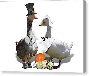 Pilgrim Ducks Canvas Print