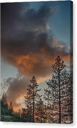 Pillar Of Fire Canvas Print by Bill Roberts