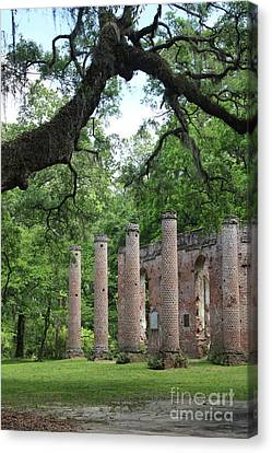 Civil War Site Canvas Print - Pillars Of Sheldon Church Ruins by Carol Groenen