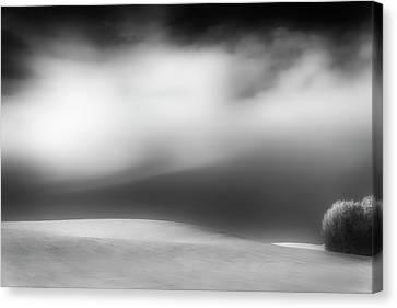 Canvas Print featuring the photograph Pillow Soft by Dan Jurak