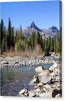 Pilots Peak And Clark Fork 5 Canvas Print by Shirley Mitchell
