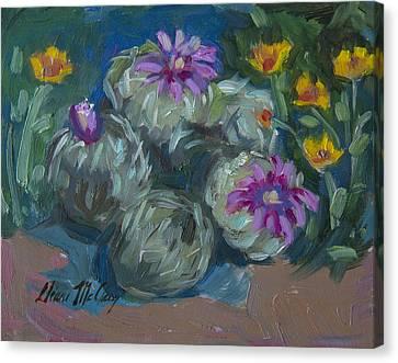 Pin Cushion Cactus At Boyce Thompson Arboretum Canvas Print by Diane McClary