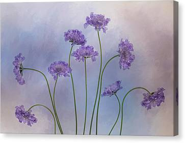 Canvas Print featuring the photograph Pincushion #3 by Rebecca Cozart
