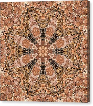 Pine Bark Mandala Canvas Print by Marv Vandehey