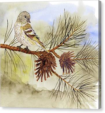 Canvas Print featuring the painting Pine Siskin Among The Pinecones by Thom Glace