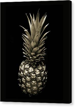 Pineapple Canvas Print - Pineapple In Sepia. by Terence Davis