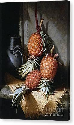 Pineapples, Circa 1880 Canvas Print