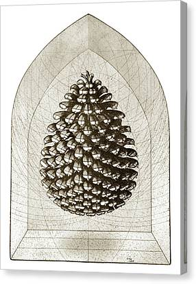 Pinecone Canvas Print by Charles Harden