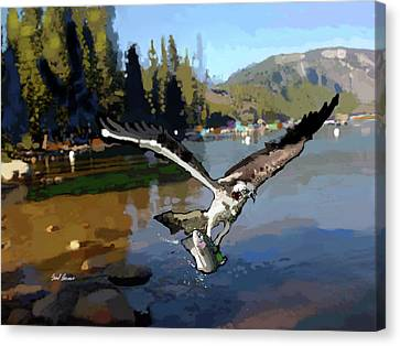 Pinecrest With Osprey And Trout Canvas Print