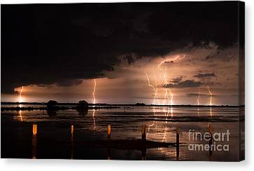 Pineland Nights Canvas Print