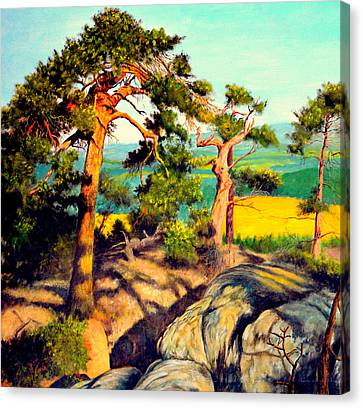 Pines On The Rocks Canvas Print