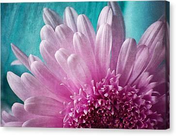 Pink And Aqua Canvas Print by Dale Kincaid