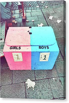 Pink And Blue Crate Canvas Print by Tom Gowanlock