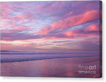 Pink And Lavender Sunset Canvas Print