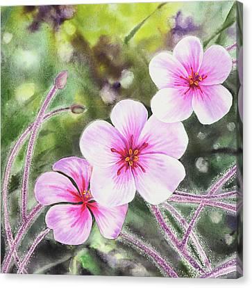 Pink And Purple Flowers Canvas Print by Irina Sztukowski