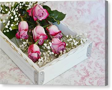 Pink And White Roses In White Box Canvas Print