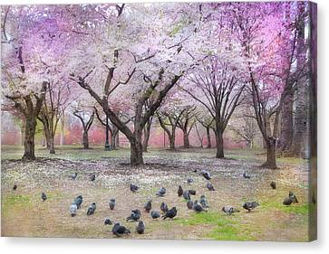 Canvas Print featuring the photograph Pink And White Spring Blossoms - Boston Common by Joann Vitali