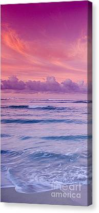 Sea Scape Canvas Print - Pink Bliss -  Part 1 Of 3 by Sean Davey