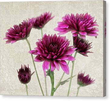Pink Bouquet Canvas Print by Judy Vincent