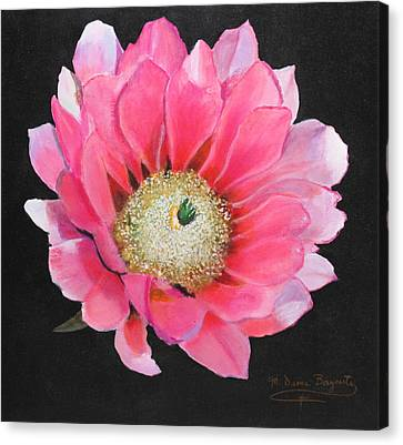 Pink Cactus Flower Canvas Print by M Diane Bonaparte