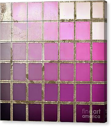 Pink Color Chart Canvas Print by Mindy Sommers