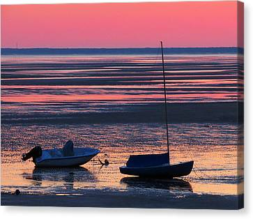 Canvas Print featuring the photograph Pink Dawn by Dianne Cowen