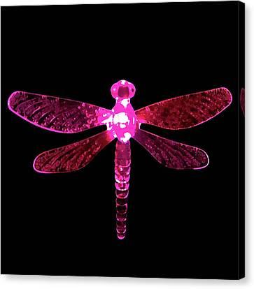 Pink Dragonfly Canvas Print