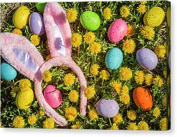 Canvas Print featuring the photograph Pink Easter Bunny Ears by Teri Virbickis