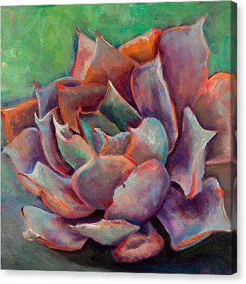 Pink Echeveria Canvas Print by Athena  Mantle