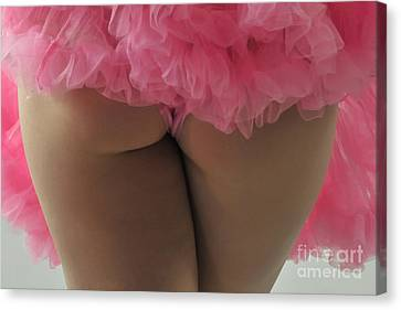 Pink Fanny Canvas Print by Robert WK Clark