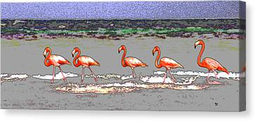 Pink Flamingos  Canvas Print by Charles Shoup