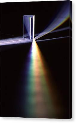 Pink Floyd Physics Canvas Print