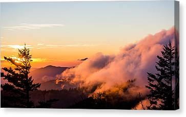 Pink Fog At Clingmans Dome Canvas Print by Shelby Young